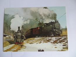 CPM Deustche Reichsbahn , Selketalbahn Ausfahrt 99 6001 -4 Mit P14 453 Nach Gernrode - Equipment