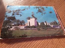 Postcard - Iraq     (V 33810) - Iraq