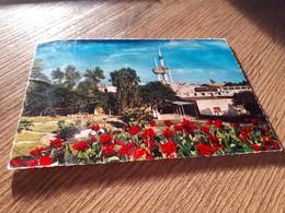 Postcard - Kuwait     (V 33815) - Koweït