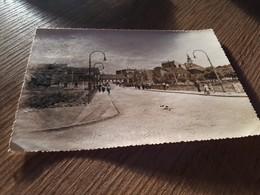 Postcard - Croatia, Vinkovci     (V 33820) - Croatie