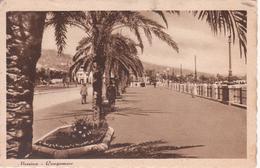 MESSINA - LUNGOMARE - ANIMATA - Messina