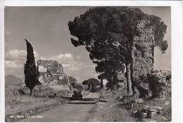 ROMA, LA VIA APPIA, Unused Real Photo, Vera Fotografia, Postcard [22741] - Roma (Rome)