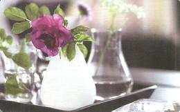 IKEA * FURNITURE STORE * SWEDEN * SWEDISH * FLOWER * PLANT * VASE * Ikea 2009 15 Fr C * France - Cartes Cadeaux