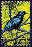 Koel, Birds, Brood Parasites Laying Their Eggs In Others Nests, Maldives 1993 MNH (D3n) - Coucous, Touracos