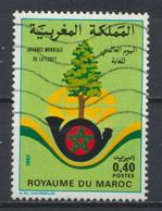 °°° MAROC - Y&T N°923 - 1982 °°° - Morocco (1956-...)