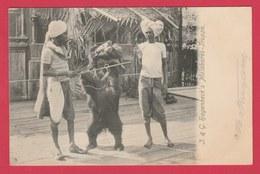 Inde / India - Beer Dancer -Malabares-Truppe ( See Always Reverse ) - Inde