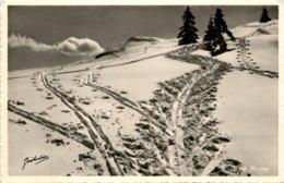 Mont Racine - Skispuren - NE Neuchâtel