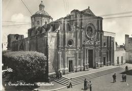 CAMPI SILENTINA CATTEDRALE  (126) - Italia