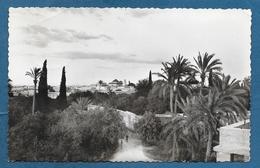 MAROC MARRAKECH 1949 - Marrakech