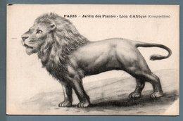 CPA - LION - JARDIN DES PLANTES / PARIS - Illustrateurs & Photographes
