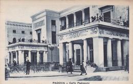 CARTOLINA - POSTCARD - PADOVA - CAFFE' PEDROCCHI - Padova