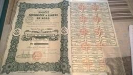 SOCIETE COTONNIERE ET LINIERE DU NORD (action De 500 Francs) - Industrie