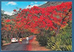 MAURITIUS LES FLAMBOYANT 1989 - Mauritius