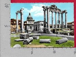 CARTOLINA VG ITALIA - ROMA - Foro Romano - 10 X 15 - ANN. 1961 - Roma
