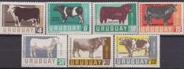 Uruguay  Bulls Hereford Holstein Shorthorn Angus Jersey Charolais Cattle Set MNH - Mucche