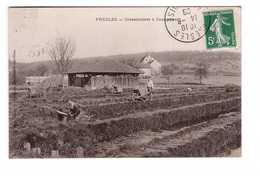 95 Presles Cressonniers à Courcelles Agriculture Culture Cresson Agriculteur Cachet 1908 - Presles