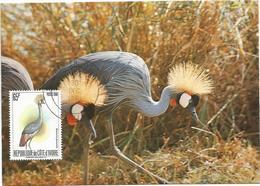 COTE D'IVOIRE 65FR OISEAUX  CARTE MAXIMUM CARD MAX ABIDJAN 30 DEC 1980 - Ivory Coast (1960-...)