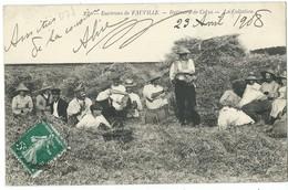 FAUVILLE  BATTEURS DE COLZA  LA COLLATION - France