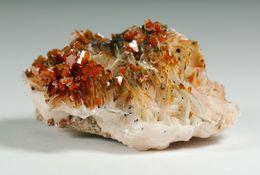 Mineral - Vanadinite Su Barite (Monastir, Marocco) - Lot. 5 - Minéraux