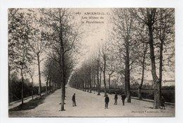 - CPA ANCENIS (44) - Les Allées De La Providence - Photo VASSELLIER 1657 - - Ancenis