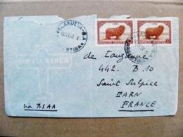 Cover Argentina 1947 Animals Fauna Lanas Villanueva Sent To France - Argentina