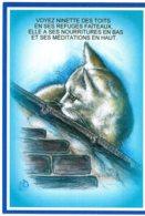 B55110 Chat :  Catus, A L'enseigne De Maître Matou , Imagier Théo Thiercy - Cartes Postales
