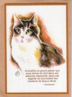 B55111 Chat :  Catus, A L'enseigne De Maître Matou, Le Grand Plaisir , Imagier Théo Thiercy - Cartes Postales