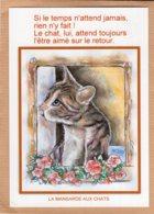 B55112 Chat :  Catus, A L'enseigne De Maître Matou, Attente , Imagier Théo Thiercy - Cartes Postales