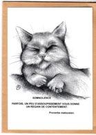 B55126 Chat - Leschatz'amoi, Somnolence  ,  Imagier Théo Thiercy - Cartes Postales
