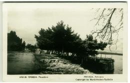 GREECE - PREVEZA / PREVESA - PEFCAKIA - VINTAGE RPPC POSTCARD (BG2102) - Grèce