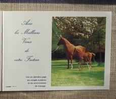Petit Calendrier Poche 1989 Lavigne PTT Facteur  La Poste Cheval Poulain - Calendriers