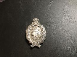 Insigne ALLEMAGNE Commémoratif Des Chars De Combat 14-18 - 1914-18