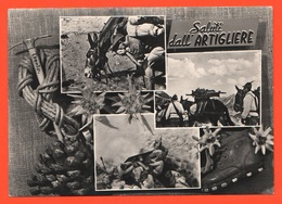 Artiglieria Da Montagna Muli Cpa Viaggiata 1963 Da Feltre Alpini Artiglieri - Manovre