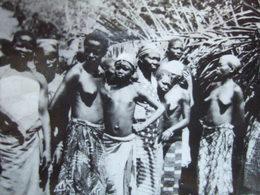 CENTRAFRICAINE ( REPUBLIQUE ) - BOZUM  ( A. E. F ) - RECOLTE DU COTON - FEMMES SEINS NUS - - Centrafricaine (République)