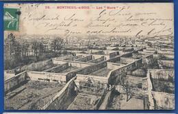 MONTREUIL-s/BOIS  Murs à Pêches  Culture De Pêchers En Espaliers    écrite En 1908 - France