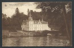 +++ CPA - HABAY LA NEUVE - Château De La Trapperie - Nels   // - Habay