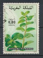 °°° MAROC - Y&T N°967 - 1984 °°° - Marruecos (1956-...)