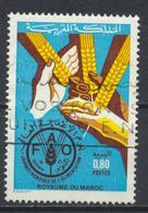 °°° MAROC - Y&T N°975 - 1984 °°° - Marruecos (1956-...)