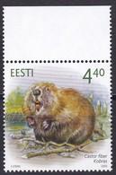 2005, EESTI, 504, Einheimische Fauna: Biber. MNH ** - Estonia