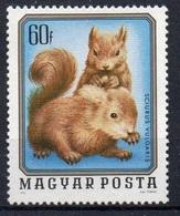 Écureuils (Animaux) - Hongrie - 1976 - Neufs