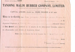 Tanjong Malim Rubber Company - Agriculture