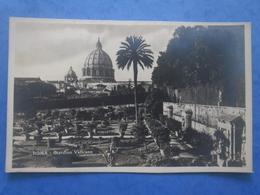 ITALIE-ROMA Giardino Vaticano - Parks & Gardens
