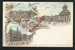 Bruxelles. Litho Multivues; Palais Des Nation, Maison Du Roi, Place Royale. - Panoramische Zichten, Meerdere Zichten