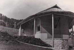 KRANJSKA GORA,SLOVENIA OLD POSTCARD (C766) - Slovénie