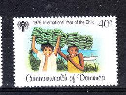 Dominica  - 1979. Anno Della Gioventù. Raccolta E Vendita Banane. Year Of Youth. Collection And Sale Of Bananas.MNH - Alimentazione