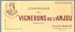 Buvard Compagnie Des Vignerons De L'Anjou Négociant à THOUARCE (MAINE ET LOIRE) - Liqueur & Bière