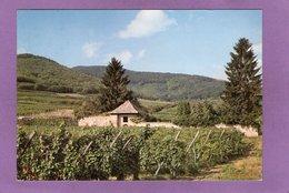 68 AMMERSCHWIR Ancienne Chapelle Du Meywihr - Autres Communes