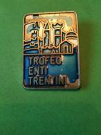 SPORT INVERNALI SPILLE  21° Trofeo Enti Trentini Cermis 1987 - Italy