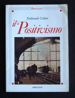 FERDINANDO VIDONI IL POSITIVISMO  MORANO ED RIEPILOGHI  1993 NAPOLI CARNAZZI - Libri, Riviste, Fumetti