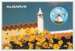 ALGARVE - Motivos Tipicos - Faro